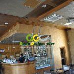 zugraveli-moderne-cafenea-palas-cu-marcopolo